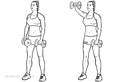 Forward_Dumbbell_Raise1